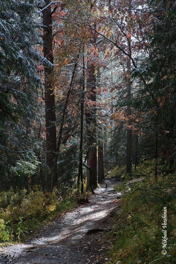 Осень на столбах, тропинка
