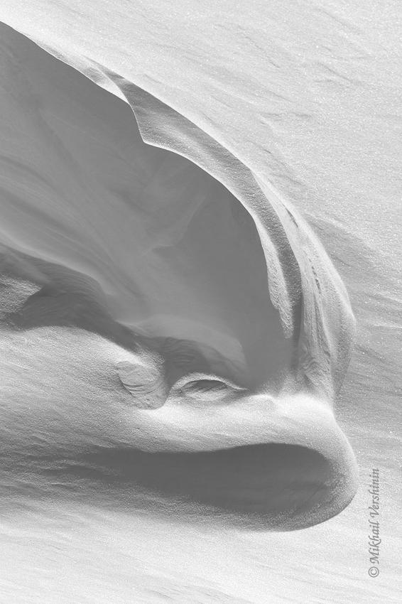 Снежный дельфин